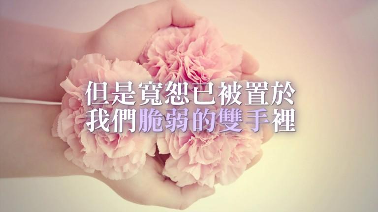 寬恕已被置於我們脆弱的雙手裡